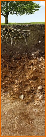 Symbolbild für Bodenkunde